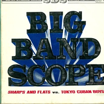 BIG BAND SCOPE(USED)