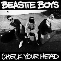 CHECK YOUR HEAD(USED)