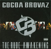 THE RUDE AWAKENING(USED)