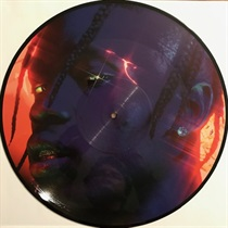 HIGHEST IN THE ROOM PICTURE DISC I (USED)