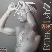 BETTER DAYZ (USED)