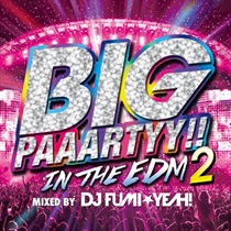 BIG PAAARTY IN THE EDM 2