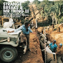 STRANGE BREAKS & MR THING
