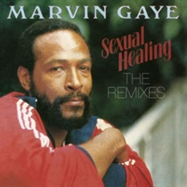 SEXUAL HEALING THE REMIXES