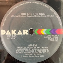 YOU ARE THE ONE (USED)